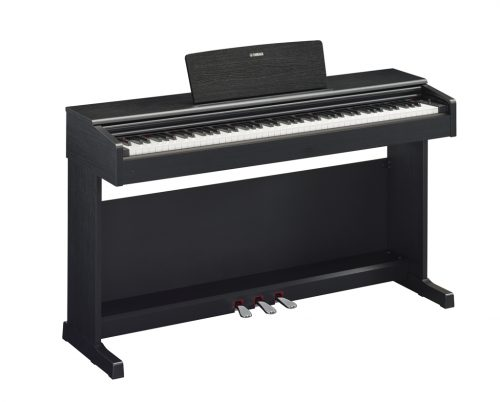 ydp-144-negro
